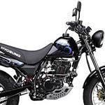 Hyosung KR Motors UM ⚙️ RT125